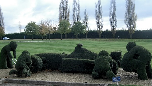 Even the Williams hedges do their bit for the team