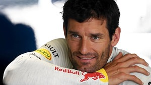 Mark Webber on pole in Abu Dhabi