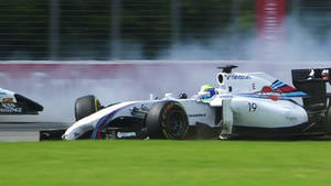 Massa across the grass