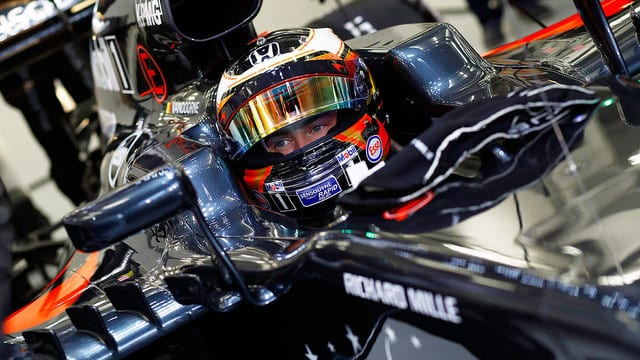 Stoffel gets comfortable in his temporary home