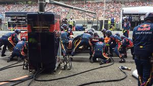 Toro Rosso pit stop
